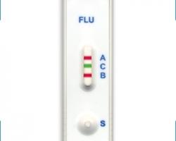 Gripi kiirtestid saadaval alates 16. jaanuarist 2017